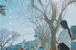 Tháng 12 này, hết dịch, ta hẹn nhau lên Đà Lạt ngắm hoa ban trắng không gặp không về