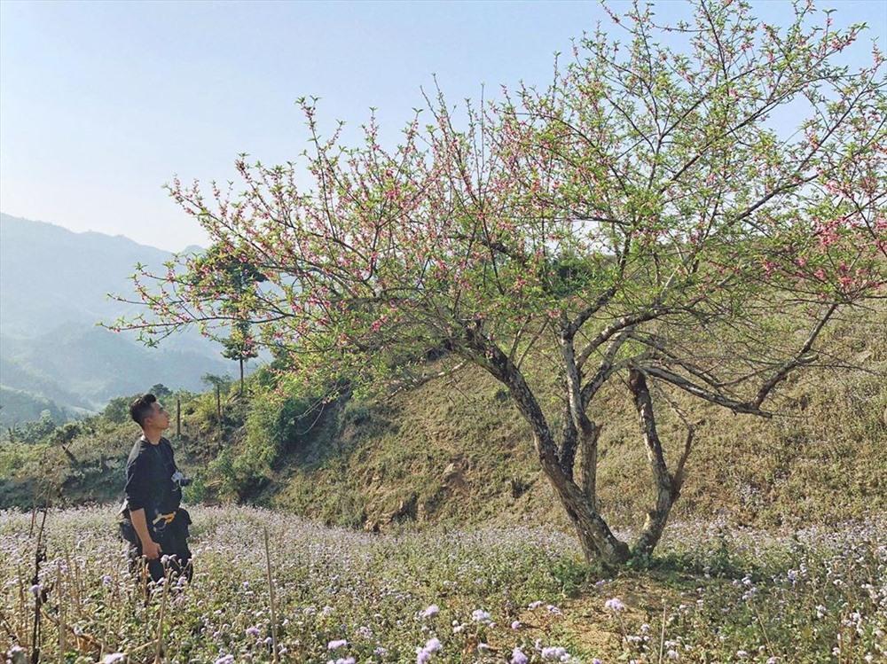 Kinh nghiệm đi Trekking đỉnh Pha Luông – khám phá nóc nhà của cao nguyên Mộc Châu