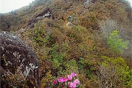 Các trekker xê dịch mách nước 2 cung đường Trekking chinh phục Bạch Mộc Lương Tử đỉnh cao