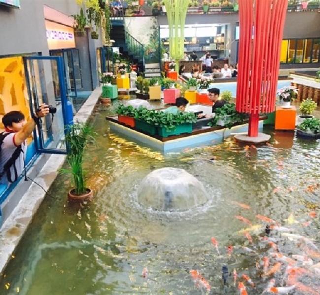 Cafe cá koi Thủ Đức KOI Lands Coffee