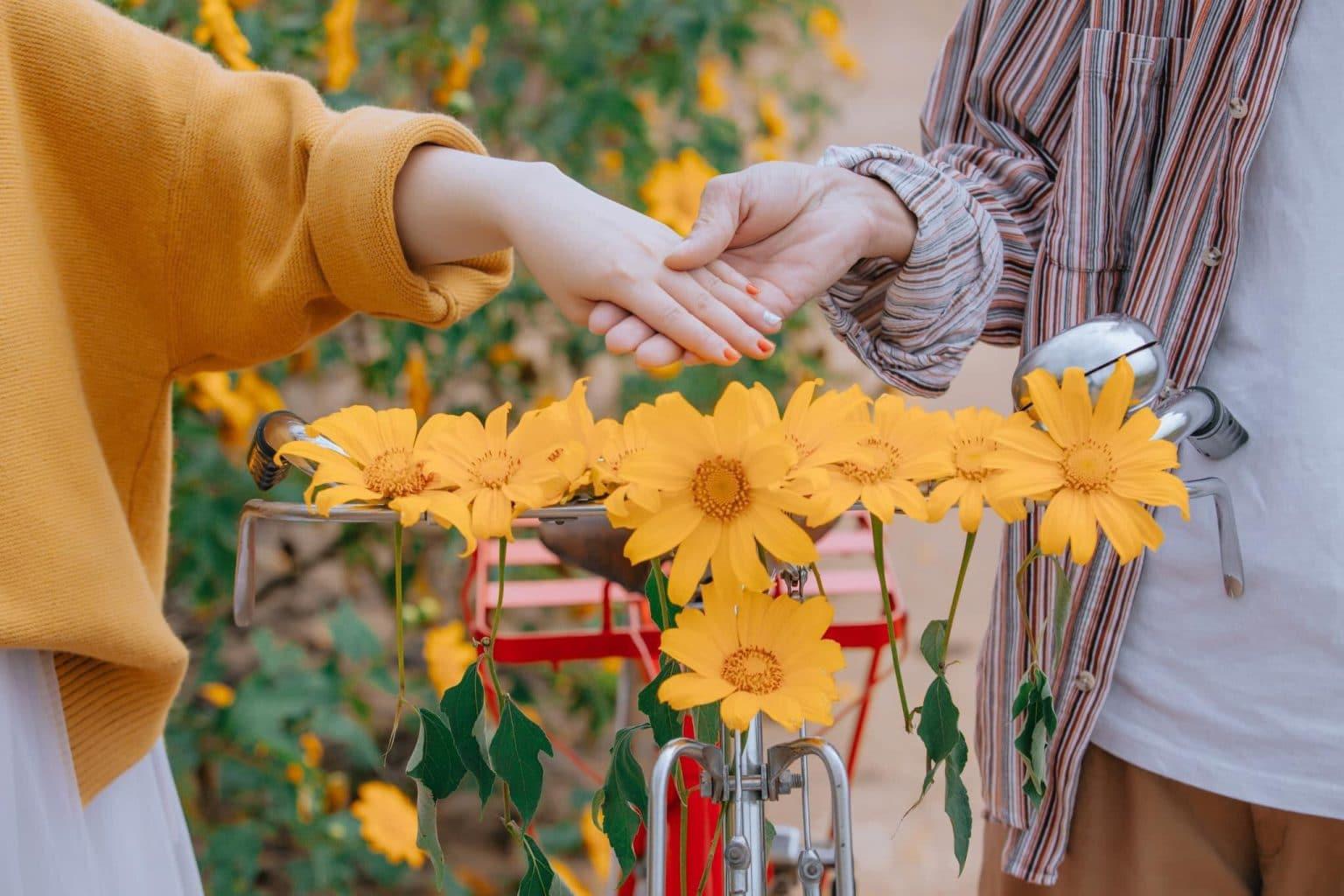 check in hoa dã quỳ Đà Lạt
