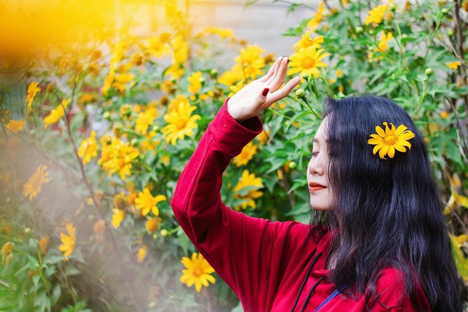 cung đường ngắm hoa dã quỳ đẹp nhất 2021