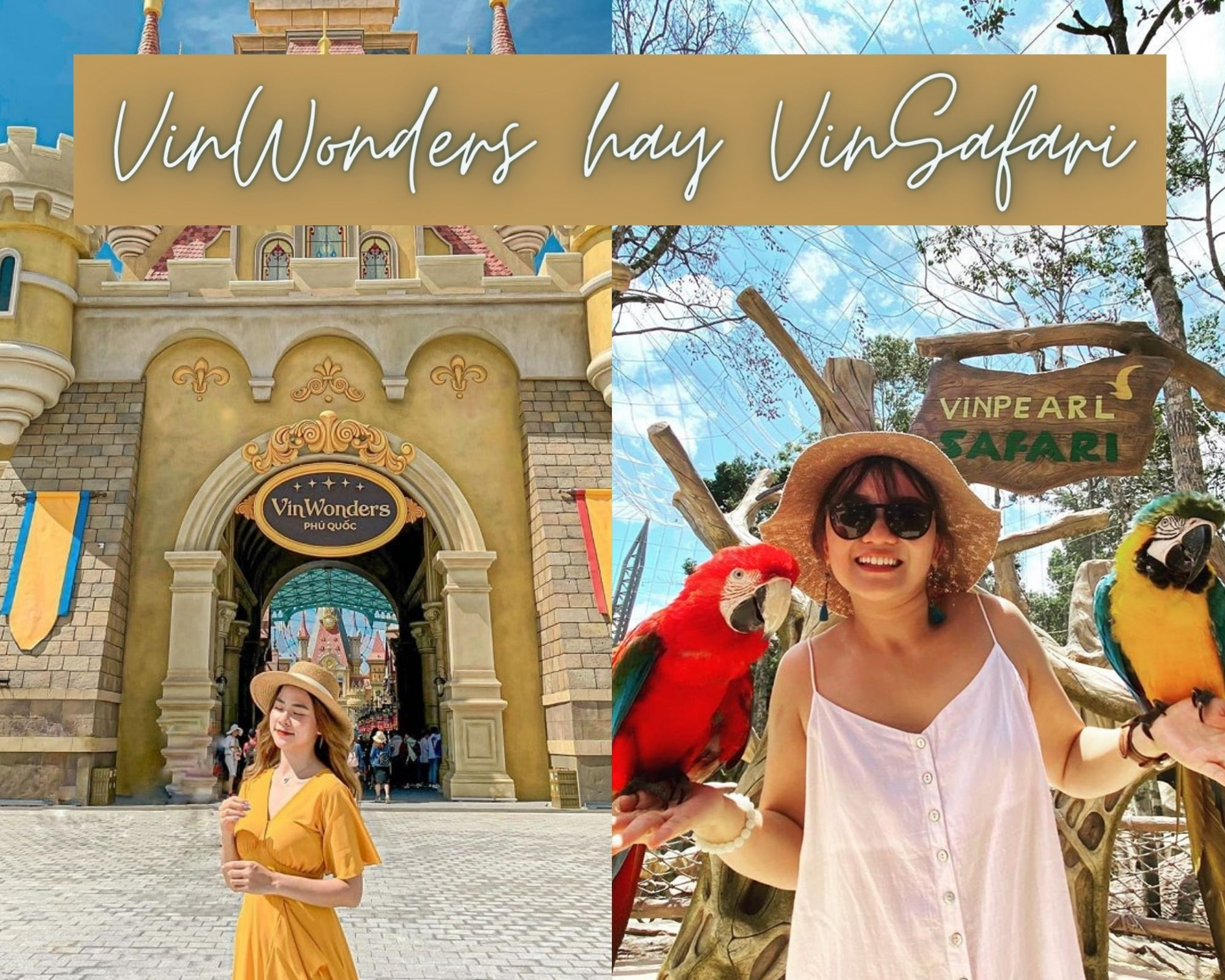VinWonders hay VinSafari trong tour du lịch đảo Ngọc