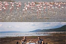 """Sửng sốt trước """"thiên đường hồng hạc"""" - công viên quốc gia hồ Nakuru ở châu Phi"""