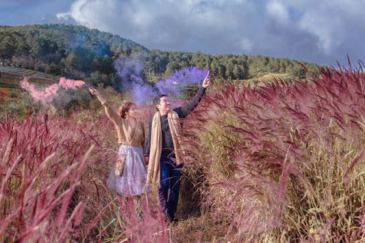 Đồi cỏ đuôi chồn là địa điểm chụp ảnh hấp dẫn tại Đà Lạt