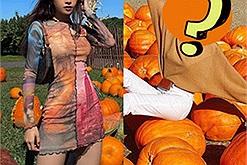 """Chi Pu đón Halloween sớm với bức ảnh vườn bí ngô ở Mỹ, dân tình lại gọi tên """"chị ong nâu"""" vì chuyện xấu hổ năm xưa"""
