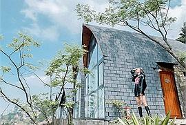 Tam Đảo Vĩnh Phúc chính thức mở cửa đón du khách ngoại tỉnh, mùa đông này mà lên Tam Đảo đúng là best
