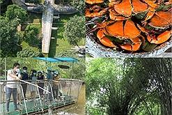 Hết dịch dân Sài Gòn đi đâu: 3 tour du lịch khép kín cho khách TP.HCM, chỉ dưới 2 triệu đồng, có cả tham quan cánh đồng muối