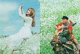 """Đi đâu ngắm mùa cải nở trắng trời Mộc Châu: ghé ngay 4 tọa độ """"săn"""" hoa đẹp nao lòng này"""