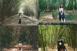 """Khám phá làng tre Phú An nức tiếng tại Bình Dương - địa điểm lý tưởng gần Sài Gòn để bạn """"chạy trốn"""" sự ồn ào"""